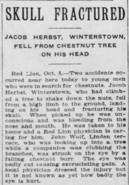 Herbst, Jacob Fractured skull, 1911