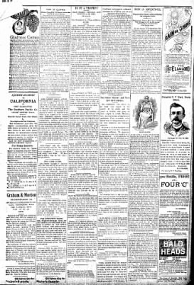 Logansport Pharos-Tribune from Logansport, Indiana on June 12, 1896 · Page 2