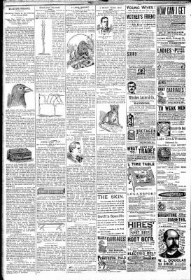 Logansport Pharos-Tribune from Logansport, Indiana on February 28, 1891 · Page 6