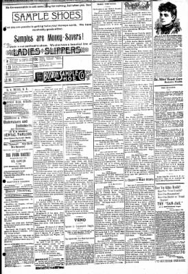 Logansport Pharos-Tribune from Logansport, Indiana on March 31, 1895 · Page 3