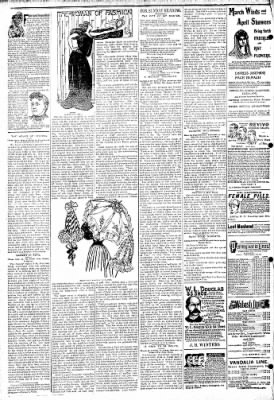 Logansport Pharos-Tribune from Logansport, Indiana on April 14, 1895 · Page 6
