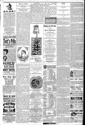 Logansport Pharos-Tribune from Logansport, Indiana on May 1, 1891 · Page 7