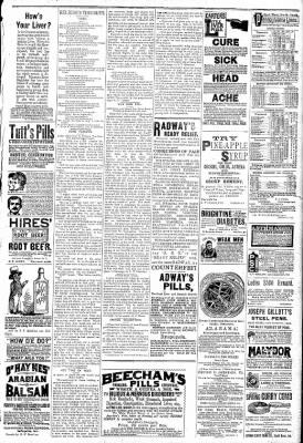 Logansport Pharos-Tribune from Logansport, Indiana on May 17, 1891 · Page 5