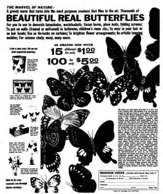 The Racine Journal-Times Sunday Bulletin from Racine, Wisconsin on July 11, 1965 · Page 43